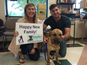 Maddies-Fund-Adoption-Event-Sign-Submitted